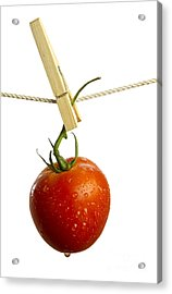 Tomato Acrylic Print by Blink Images