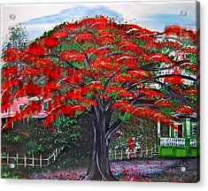 Treasures Of Puerto Rico Acrylic Print