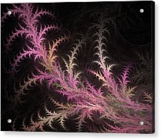 Tree Branch Acrylic Print by Michele Caporaso