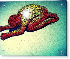 Trying Expelling The Spirit Of Beings And Things Acrylic Print by Paulo Zerbato