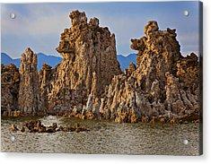 Tufa Mono Lake California Acrylic Print by Garry Gay