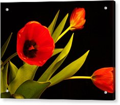 Acrylic Print featuring the photograph Tulip Arrangement 2 by Peter Mooyman