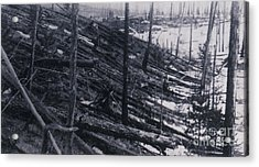 Tunguska Event, 1908 Acrylic Print by Science Source