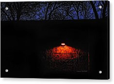 Watching Acrylic Print by Donna Blackhall