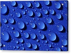 Water Droplets Acrylic Print by Courtesy Of Crown Copyright Fera