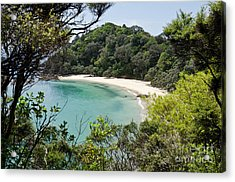 Whale Bay In New Zealand Acrylic Print