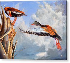 What Are You Whistling At Acrylic Print by AnnaJo Vahle