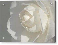 White Acrylic Print by Meeli Sonn