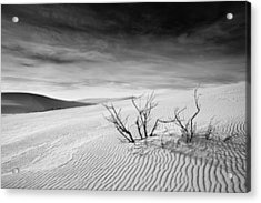Acrylic Print featuring the photograph White Sands by Mike Irwin