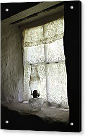 Window Light Acrylic Print by Julie Williams