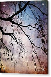 Winter Is Here Acrylic Print