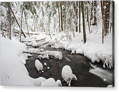 Winter Snow Along Still Creek In Mt Acrylic Print by Craig Tuttle