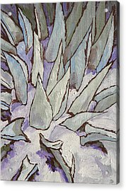 Winter Snow Acrylic Print by Sandy Tracey