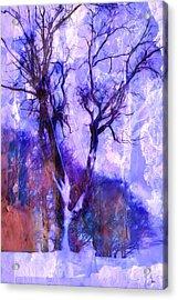 Winter Tree Acrylic Print by Ron Jones