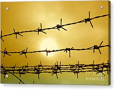Wire Fence Acrylic Print by Antoni Halim