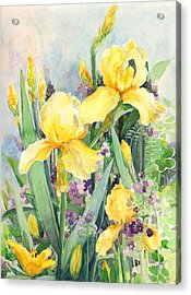 Acrylic Print featuring the painting Yellow Iris by Nancy Watson