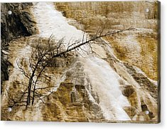 Acrylic Print featuring the photograph Yellowstone Color by J L Woody Wooden