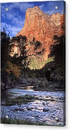 Zion National Park View Acrylic Print by Dave Mills