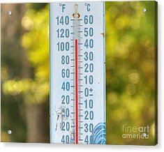 110 Degrees In The Shade Acrylic Print by Al Powell Photography USA
