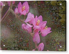 In Bloom Collections Acrylic Print by Chye Kwang Yan