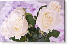 Roses For You Acrylic Print by Gornganogphatchara Kalapun