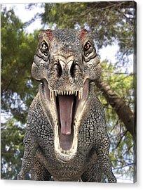Tyrannosaurus Rex Dinosaur Acrylic Print by Roger Harris
