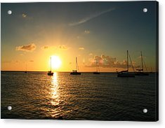Sunset Acrylic Print by Catie Canetti