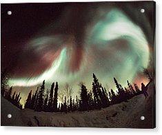 Aurora Borealis Acrylic Print by Chris Madeley