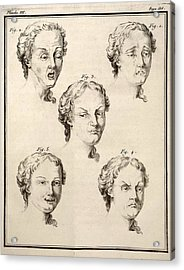1749 Human Emotions And Expression Buffon Acrylic Print by Paul D Stewart