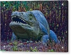 Dinosaur Acrylic Print by Dawn OConnor