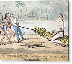 1826 Naturalist Charles Waterton & Caiman Acrylic Print by Paul D Stewart