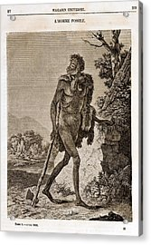 1838 Cave Man Engraving 'l'homme Fossile' Acrylic Print by Paul D Stewart