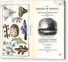 1838 Frontis Mantell \wonders Of Geology\ Acrylic Print by Paul D Stewart