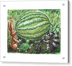 19 - Cypress Creek Wma - Watermelon Acrylic Print by Rob Smith
