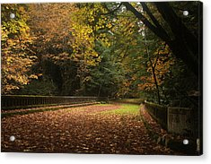 1938 Bridge In Avenue Of The Giants Acrylic Print