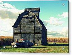 1950 Cadillac Barn Cornfield Acrylic Print