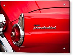 1955 Ford Thunderbird Acrylic Print by David Patterson