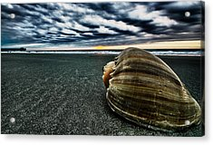 Art Of The Sea Acrylic Print by Calvin Smith