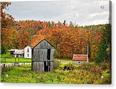 Autumn Farm Acrylic Print by Steve Harrington