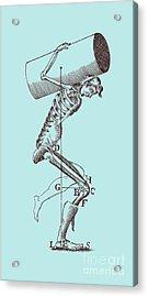 Biomechanics Acrylic Print by Science Source