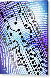 Biometric Fingerprint Scan Acrylic Print by Pasieka