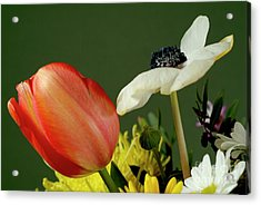 Bouquet Of Flowers Acrylic Print by Sami Sarkis