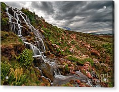 Brides Veil Waterfall Acrylic Print by Fiona Messenger