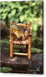 Bullfrog Acrylic Print by Kenneth H Thomas and Photo Researchers