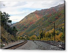 Canyon Tracks Acrylic Print