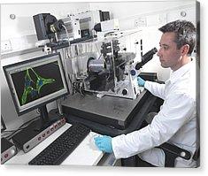Cell Biology Laboratory Acrylic Print by Tek Image
