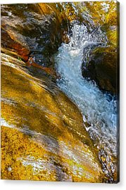 Childs Brook Close Up Acrylic Print by George Ramos