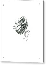 Creepy Curiosity IIi Acrylic Print by Jeff Gould
