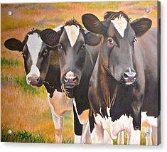 Curious Trio Acrylic Print