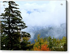 First Day Of Fall Acrylic Print by Thomas R Fletcher